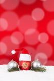 Julkorthattgarnering med granfilialen, röd bakgrund Arkivbilder