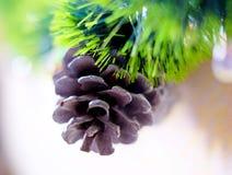 Julkottar och stearinljus Arkivfoto
