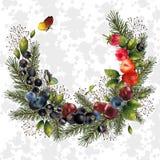Julkrans med granfilialer och bär för din dekor Arkivbild