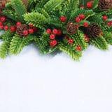 Julkransen med sörjer kottar och bär som kura ihop sig i snö Fotografering för Bildbyråer