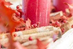 Julkransgarnering med röda torkade nyponbär royaltyfria foton