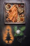 Julkryddor för att baka och garnering Royaltyfri Bild