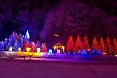 Jullampor på kapell och trees Arkivfoto