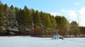 Jullandskap Djupfryst skog Royaltyfria Bilder