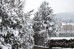 Jullandskap - träd som täckas med vit snö Arkivbild