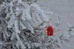 Julleksak på en julgran Royaltyfri Foto