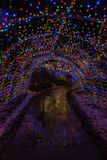 Julljus i Duluth, Minnesota under vintersäsongen på Lake Superior kuster royaltyfria bilder