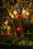 Julljus på en palmträd i Phuket Arkivfoto