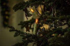 Julljus utanför bikupahuset royaltyfria bilder