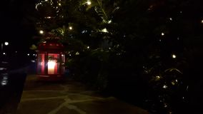 JullyktaCloseup Står den röda lyktan för jul unde under ett julgran-träd Lykta med bränningstearinljuset på stock video