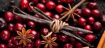 Julmat Ingredienser för att laga mat att baka för jul royaltyfri bild