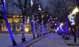JulMoskva Royaltyfria Bilder