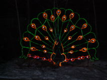 Julnatt på zoo Royaltyfri Bild