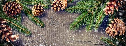 Julnaturgarneringar med granfilialer och sörjer kottar Arkivfoton