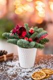 Julordningen med norrman sörjer Nobilis och som dekorerar med juldekoren i en kaffekopp Girlandbokeh på royaltyfria foton