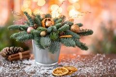 Julordningen med norrman sörjer Nobilis och som dekorerar med juldekoren i en metallkopp Girlandbokeh på fotografering för bildbyråer
