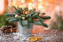 Julordningen med norrman sörjer Nobilis och som dekorerar med juldekoren i en metallkopp Girlandbokeh på arkivfoton