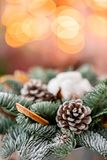 Julordningen med norrman sörjer Nobilis och som dekorerar med juldekoren i en metallkopp Girlandbokeh på royaltyfria bilder