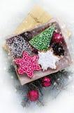 Julpepparkakor i form av julsymboler royaltyfria bilder