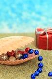 Julprydnadar i ett havsskal Royaltyfria Bilder