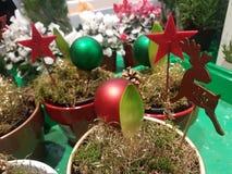 Julprydnader som smyckar din trädgård royaltyfria foton