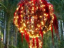 Julprydnadskärm på Longwood trädgårdar arkivbilder