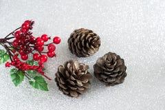 Julpynt - järnek och sörjer kottar Fotografering för Bildbyråer