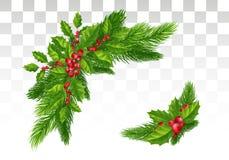 Julpynt: Julgranfilialer och järnek med beträffande royaltyfri illustrationer