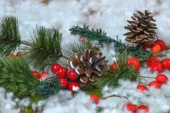 Julpynt med sörjer kottar Royaltyfri Bild