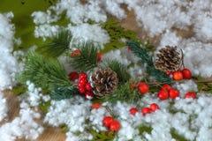 Julpynt med sörjer kottar Royaltyfria Bilder