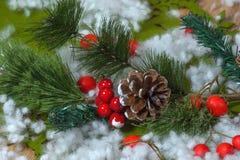 Julpynt med sörjer kottar Royaltyfri Foto