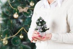 Julpynt på en jultree Fotografering för Bildbyråer