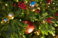 Julpynt på filialgranen Arkivbilder