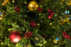 Julpynt på filialgranen Arkivfoto