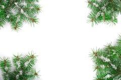 Julram av granträdfilialen med snö som isoleras på vit bakgrund med kopieringsutrymme för din text Top beskådar Fotografering för Bildbyråer