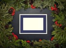 Julram med det vintergröna granträdet, kottar, järnekbär a Arkivbild