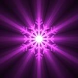 julsignalljuslampa - purpur snowflake Arkivfoton
