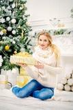 Julskönhet Arkivfoton