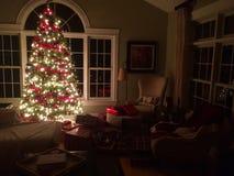 julskogen knurled morgon som snöig trails övervintrar wide arkivfoto