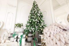 julskogen knurled morgon som snöig trails övervintrar wide klassiska lägenheter med en vit spis, dekorerat träd, ljus soffa, stor Arkivfoto