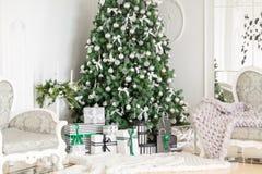 julskogen knurled morgon som snöig trails övervintrar wide klassiska lägenheter med en vit spis, dekorerat träd, ljus soffa, stor Arkivfoton