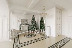 julskogen knurled morgon som snöig trails övervintrar wide klassiska lyxiga lägenheter med en vit spis, dekorerat julträd, soffa, Royaltyfria Foton