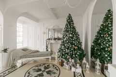 julskogen knurled morgon som snöig trails övervintrar wide klassiska lyxiga lägenheter med en vit spis, dekorerat julträd, soffa, Arkivfoto