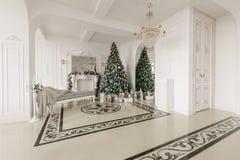 julskogen knurled morgon som snöig trails övervintrar wide klassiska lyxiga lägenheter med en vit spis, dekorerat julträd, soffa, Royaltyfri Foto