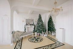 julskogen knurled morgon som snöig trails övervintrar wide klassiska lyxiga lägenheter med en vit spis, dekorerat träd, ljus soff Royaltyfria Bilder