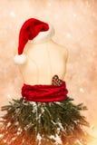 Julskyltdocka med Santa Hat Arkivfoton