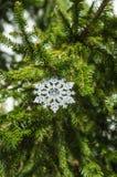 Julsnöflinga! Fotografering för Bildbyråer