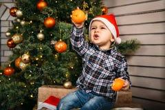 Julstående av pysen i rött santa hattsammanträde på askar med gåvor med apelsiner i händer nära julträdet arkivfoton