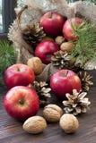 Julstilleben med äpplen och sörjer kottar Arkivbild
