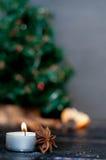 Julstilleben med tangerin Royaltyfria Foton
